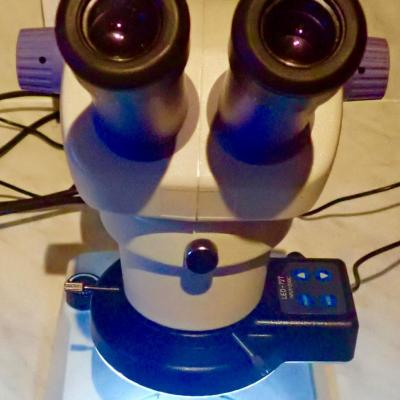 Insize Ism-zs30Zoom stéréo microscope /l